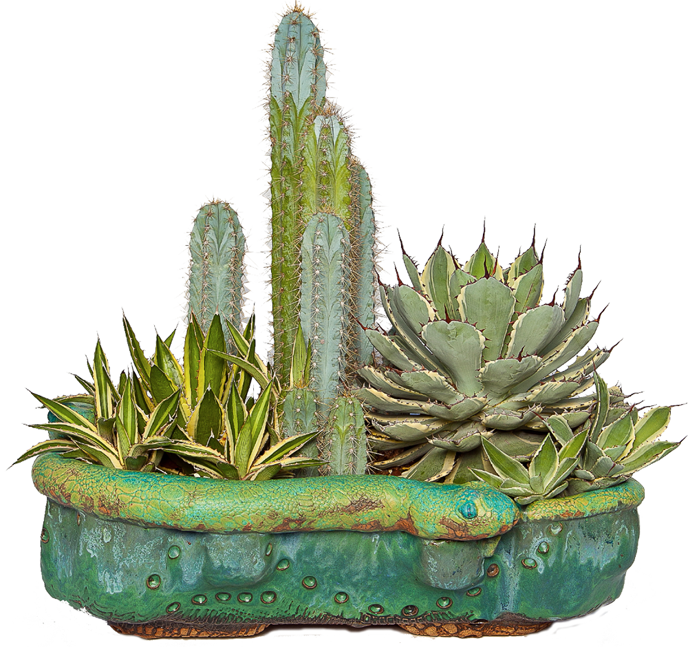 Truly Unruhly Concrete Pots Succulents And Other Crafts