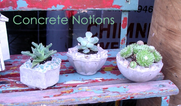Concrete Notions banner, pots on bench